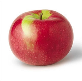 Macintosh    Sweet, tart tang, very juicy & tender white flesh   Harvest: Late August - Mid Septemeber