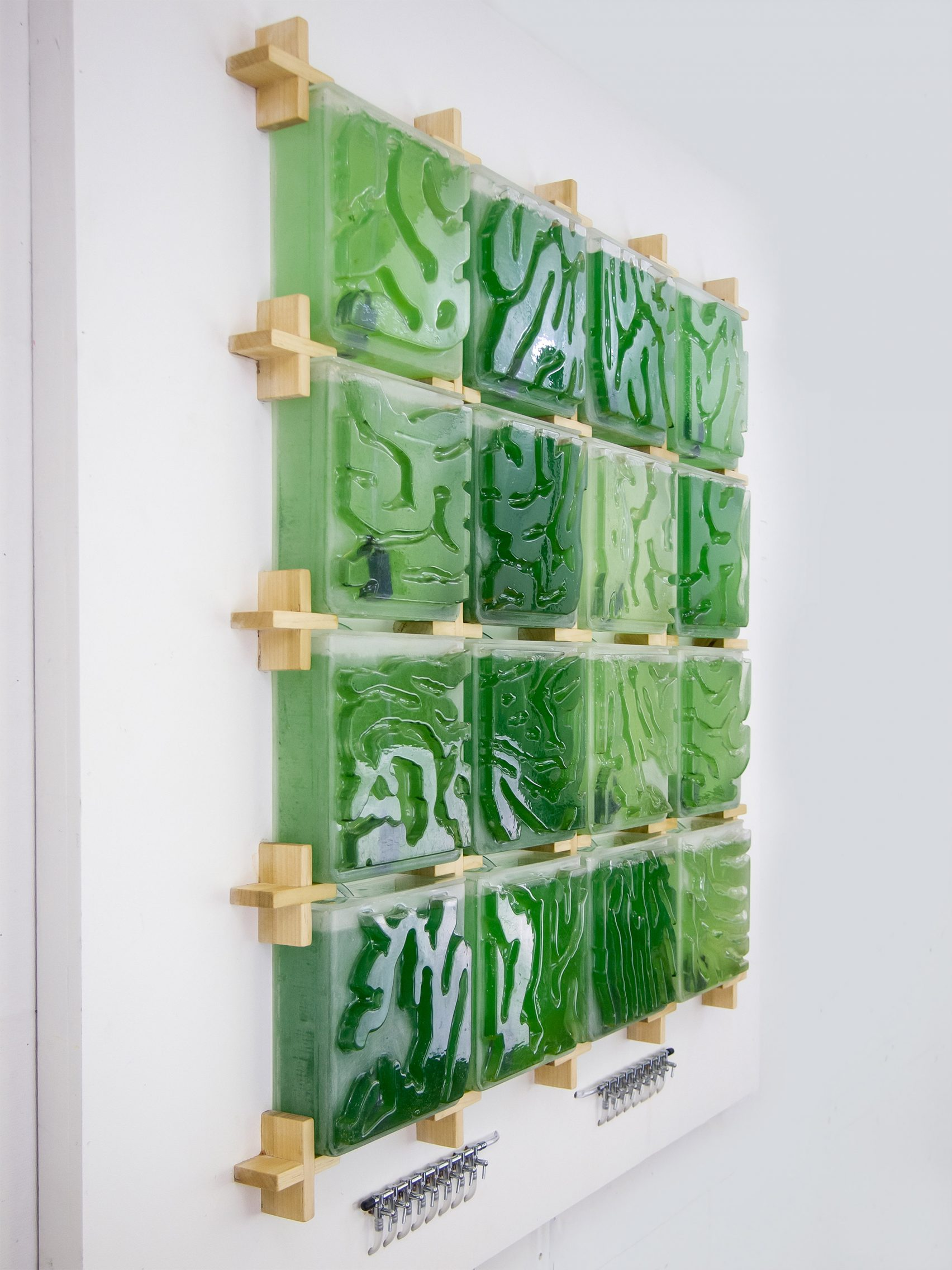 the-coral-algae-farm-design_dezeen_2364_col_12-1704x2272.jpg