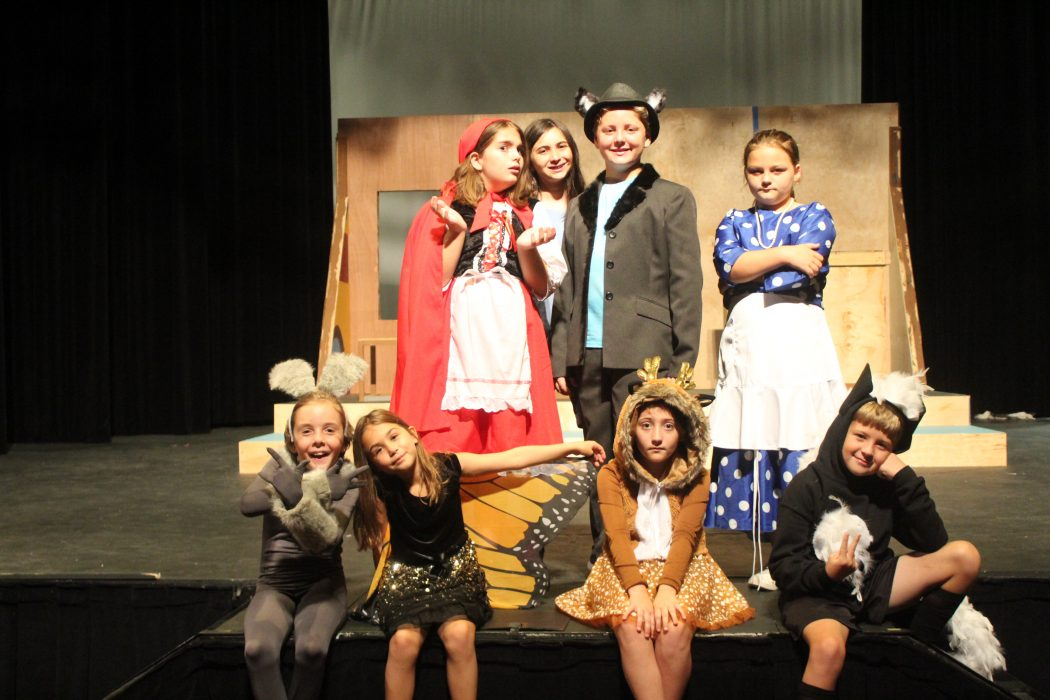 The Summer Musical TheatreCamp 2019 Cast of The Real Story of Little Red Ridinghood
