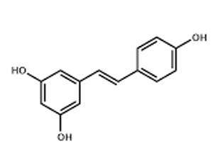 prescription1.png
