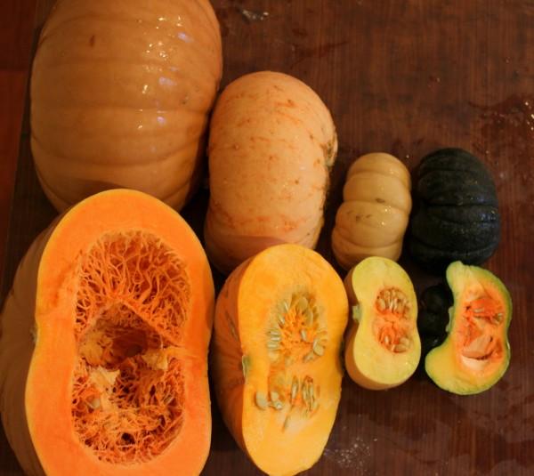 pie pumpkins before roasting