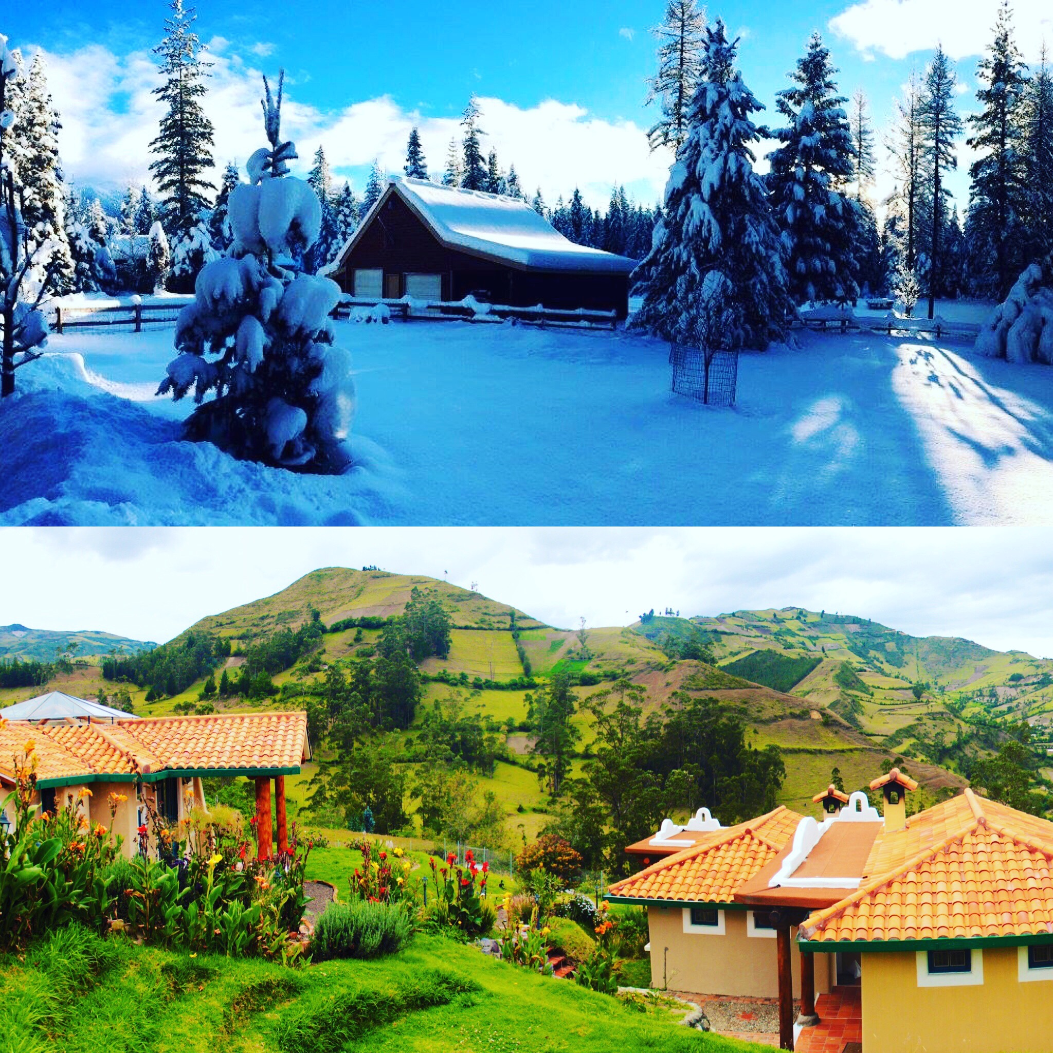 Christmas 2015 vs. Christmas 2016: Quite the difference in view.