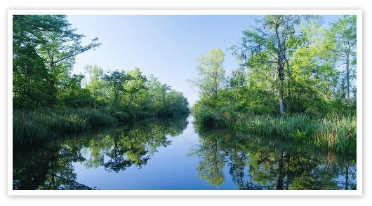 Winyah Bay backwater