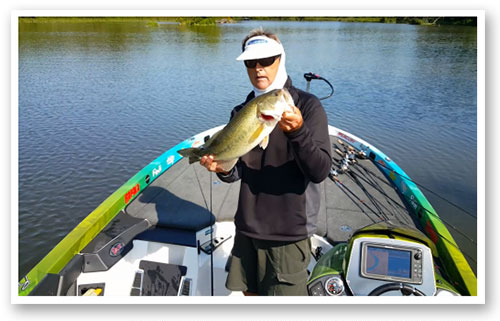 Quality fish like this still roam the shallows of the Potomac River