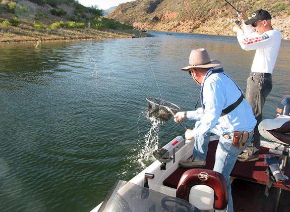 When you're fishing offshore, be prepared for big fish, and be ready to net your partner's fish.
