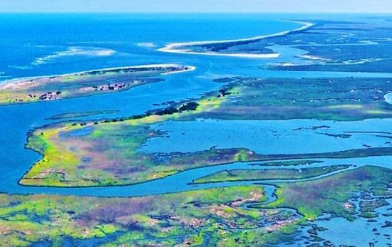 Although located on the Carolina coast, Winyah Bay's many tidal creeks do harbor largemouth bass.