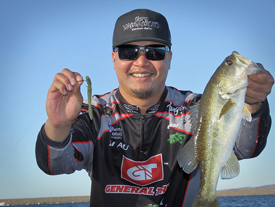 Tai with an early-morning bass caught on a Neko rig.