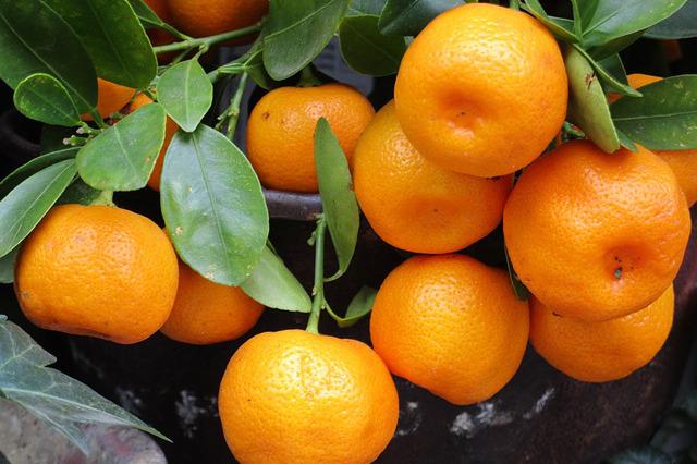 tangerines.jpg