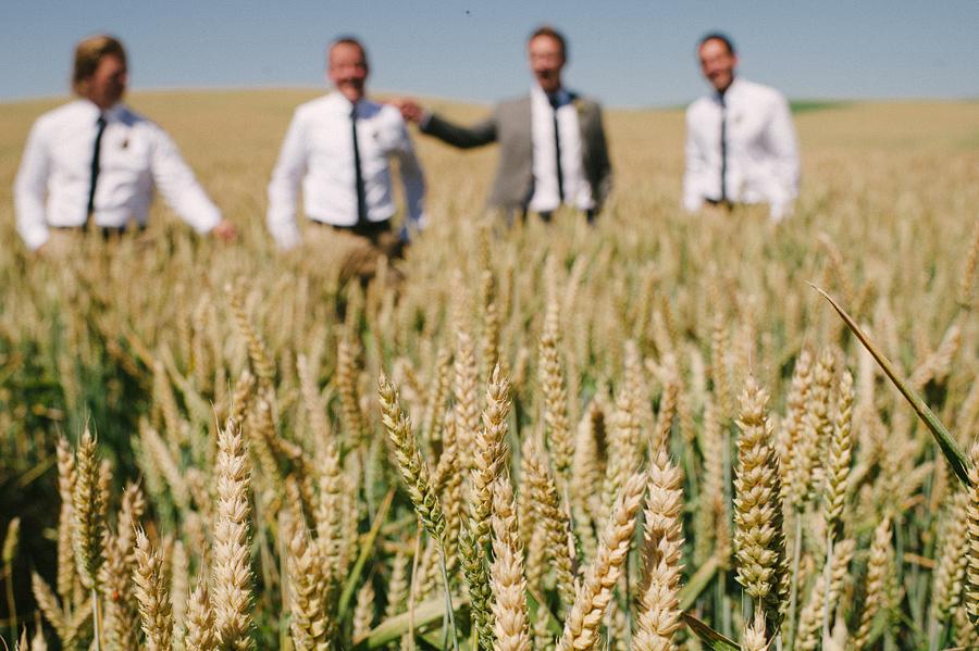 areus wedding wheat field walla walla keith+leah040.JPG