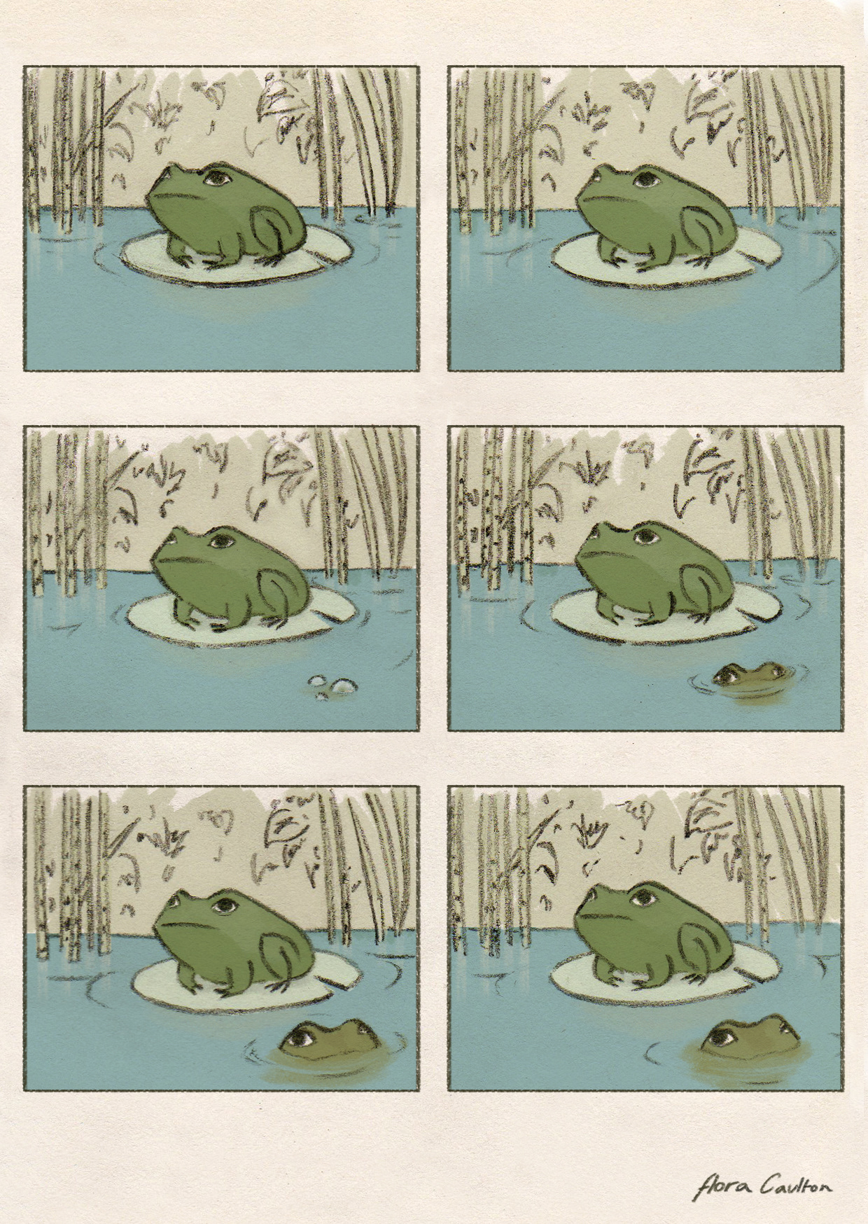 'Pond' - Flora Caulton (2017)