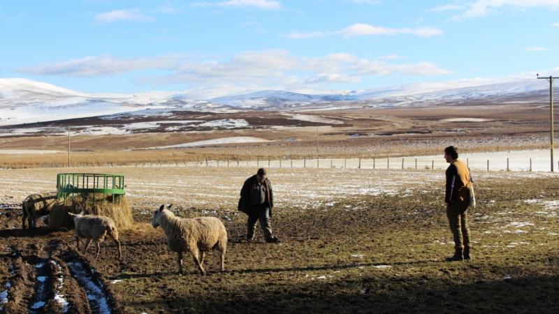 Inland Scotland, Fernando Garcia-Dory. Source: CCA Glasgow.