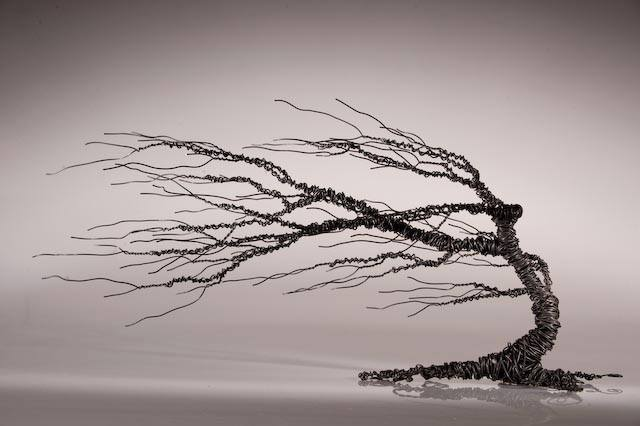 conemmara hawthorn series  approx 30cm tall  photo credit: core photography, Galway Ireland