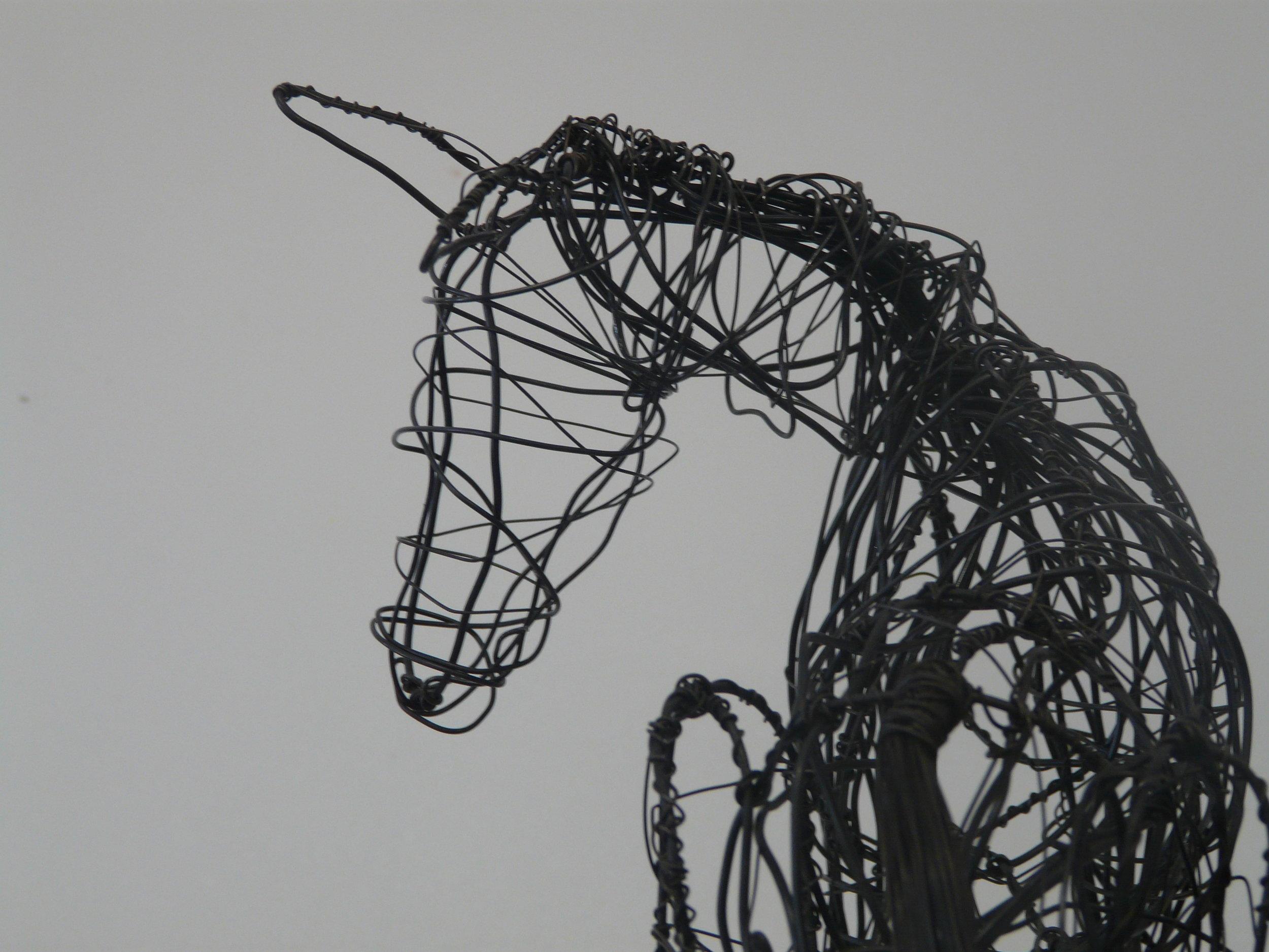horse_10.JPG