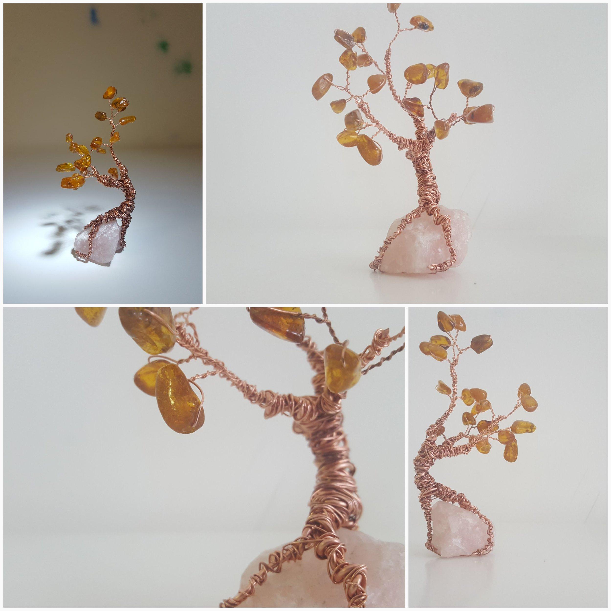amber bonsai.jpg