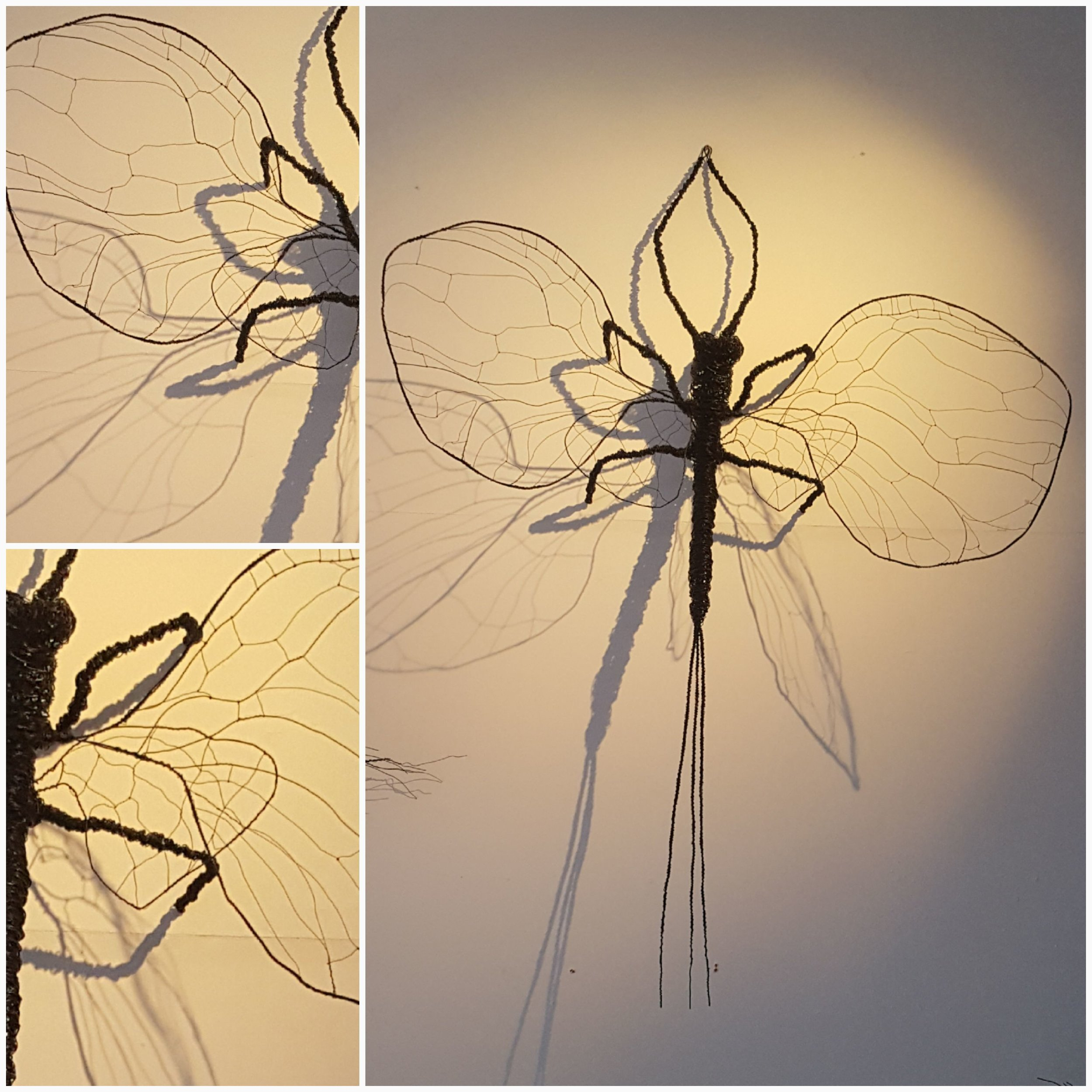 giant mayfly.jpg