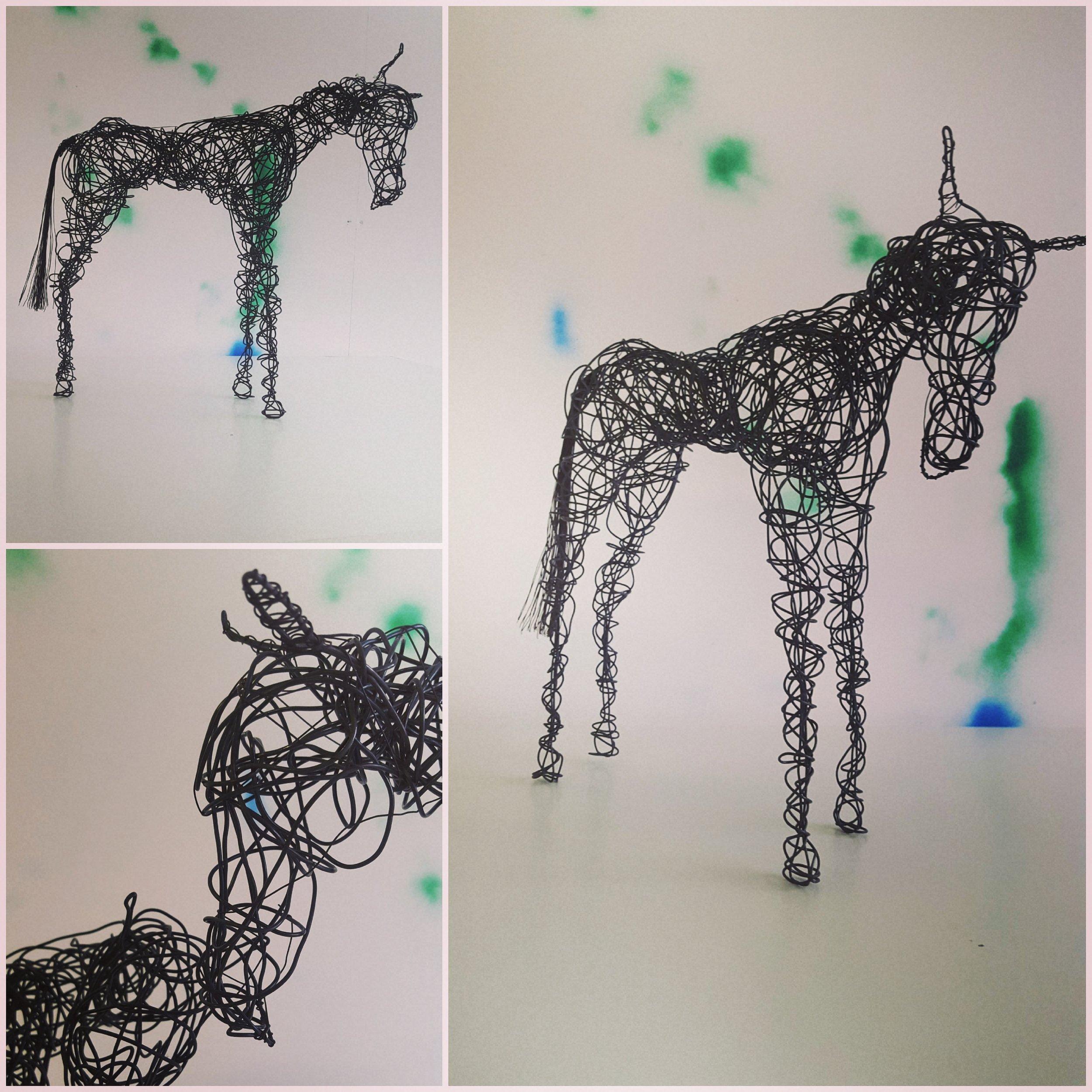 pony2017.jpg