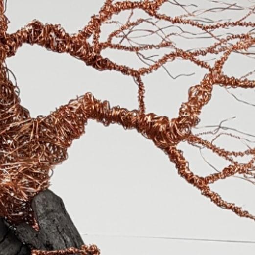 Bogwood windswept #3  Bronze sculpture on ancient Irish bog oak  #now #galway #❤ #artist #artwork  #grateful #newwork #tree #wire #love #artinmind #darkness #light #followforfollowback  www.glenngibsonsculpture.com