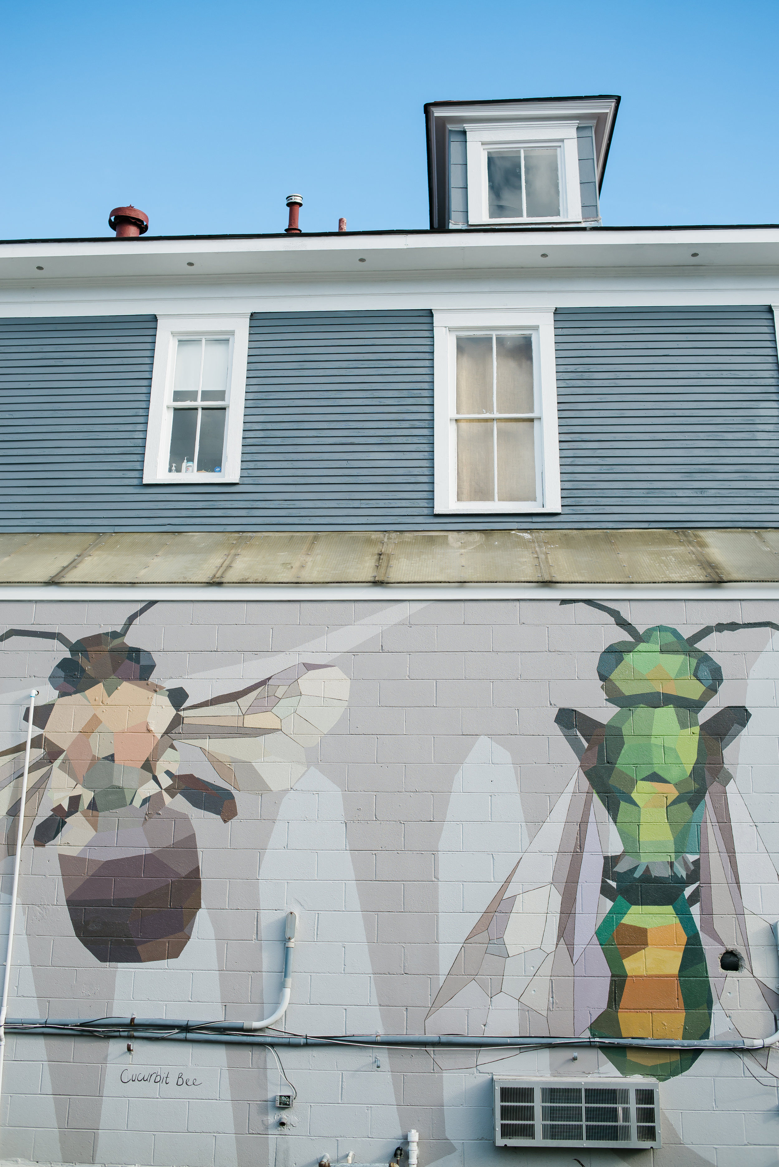 Wall art in the Starland District