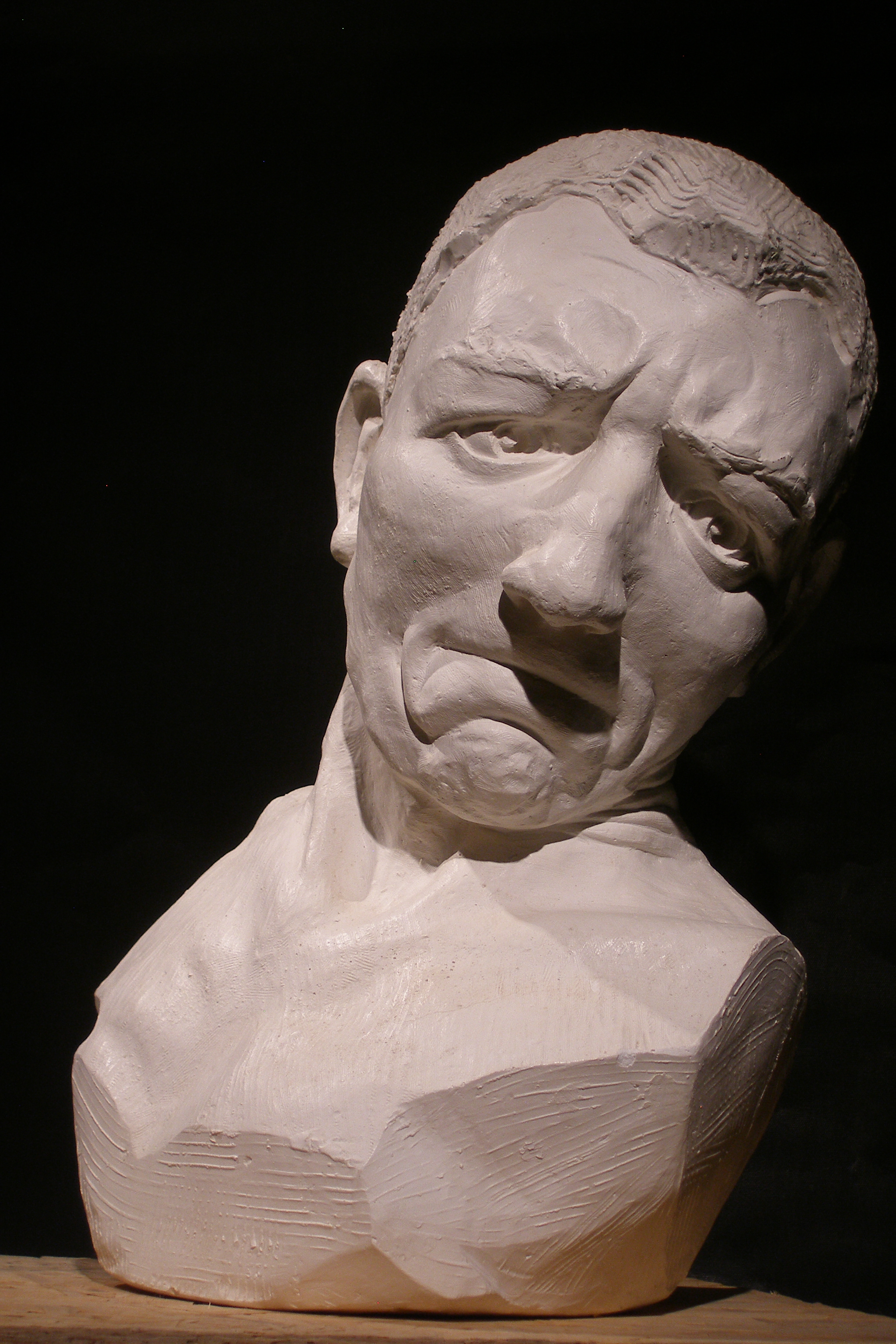 """""""Fault"""" plaster, 1.25 life-sized."""