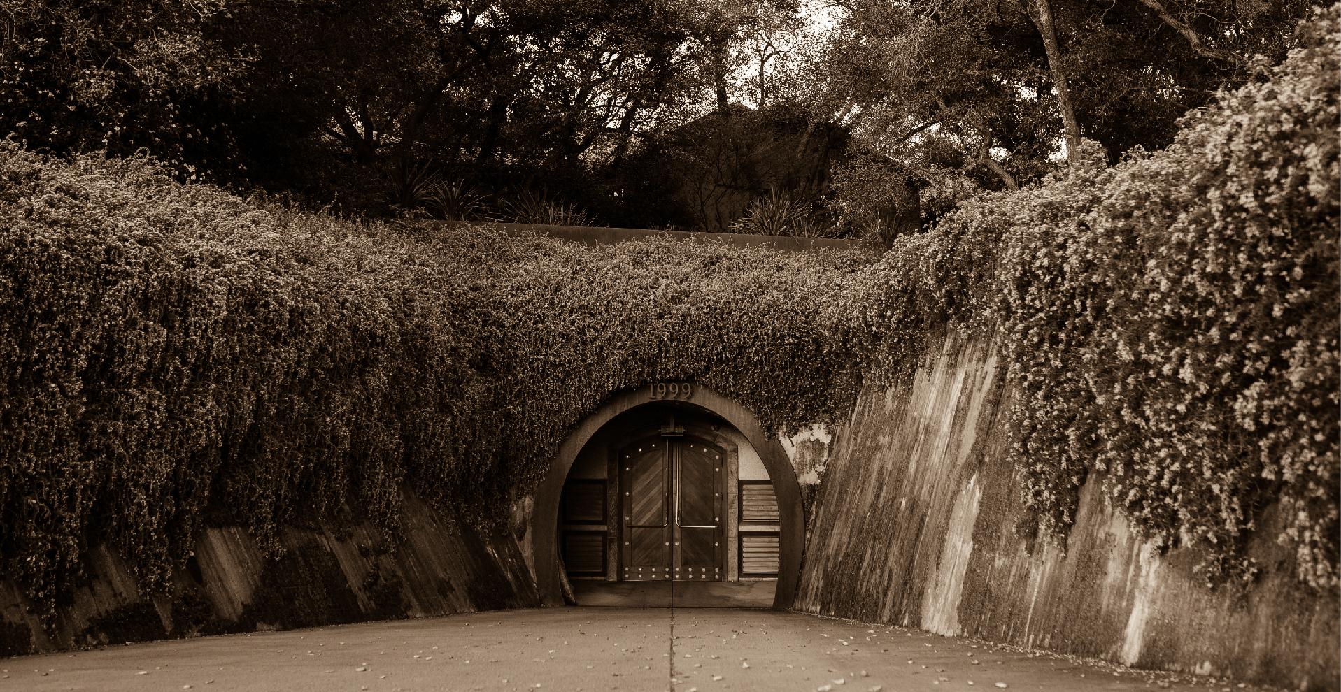 rudd_caves_vineyardentrace-01.jpg