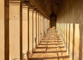 Cambodia_038_LoRes1-275x200.jpg