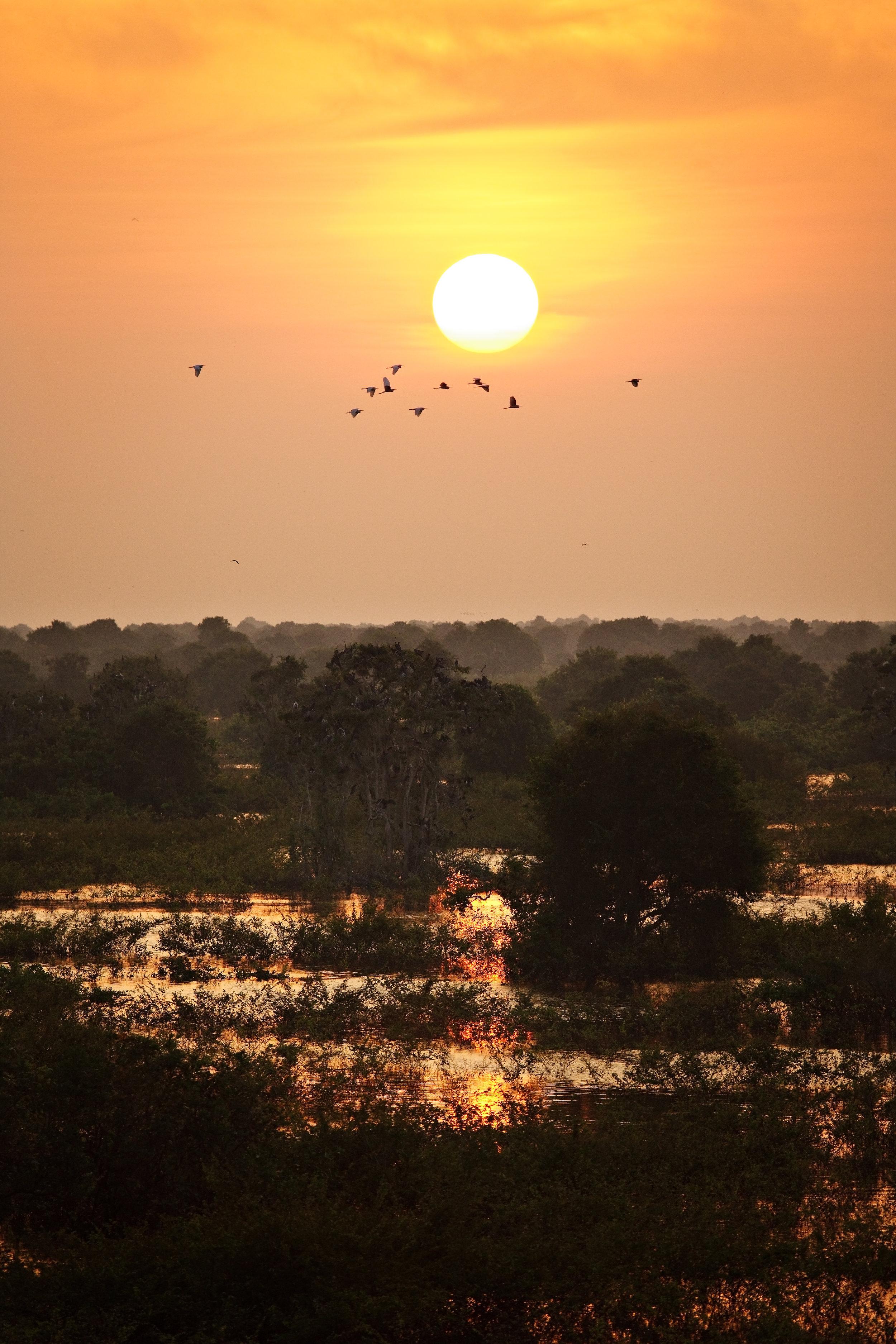 Cambodia-0004.jpg
