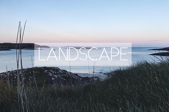 Landscape cover t19.jpg