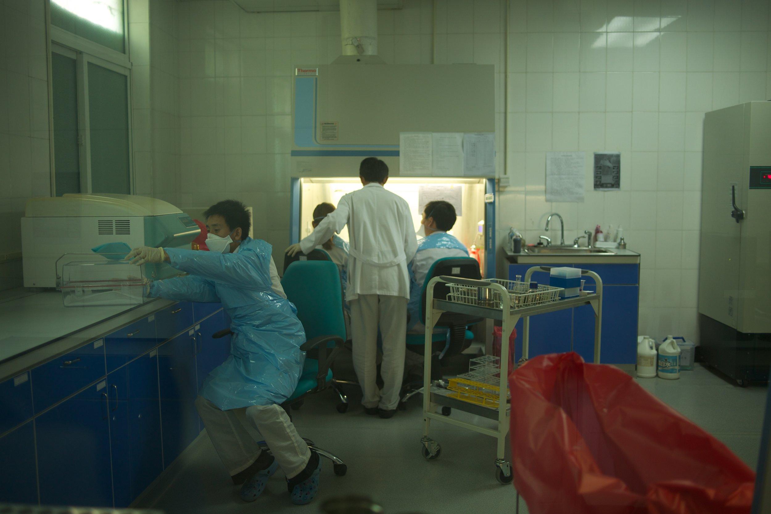 Nat Lab 288.jpg