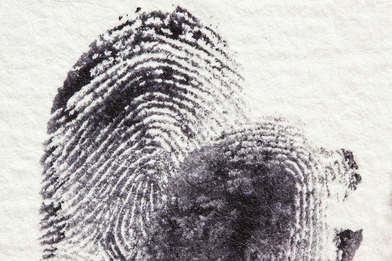 www.mgmstraining.ie/fingerprint