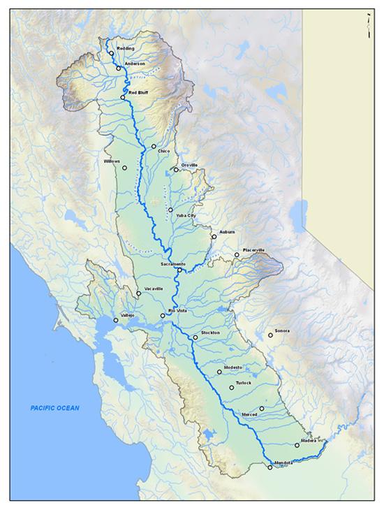 The Delta ERP area