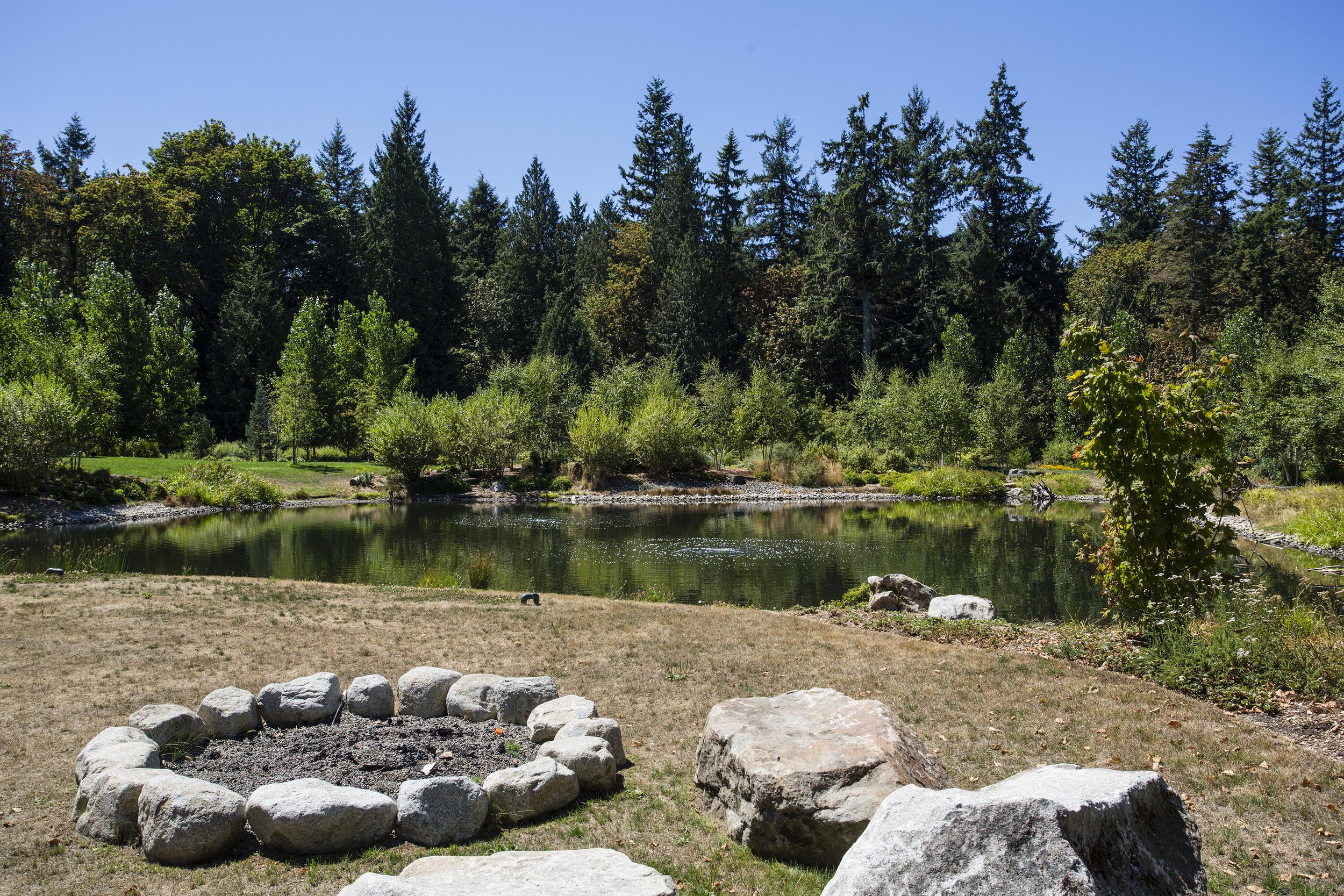 pond-1-Lrg.jpg