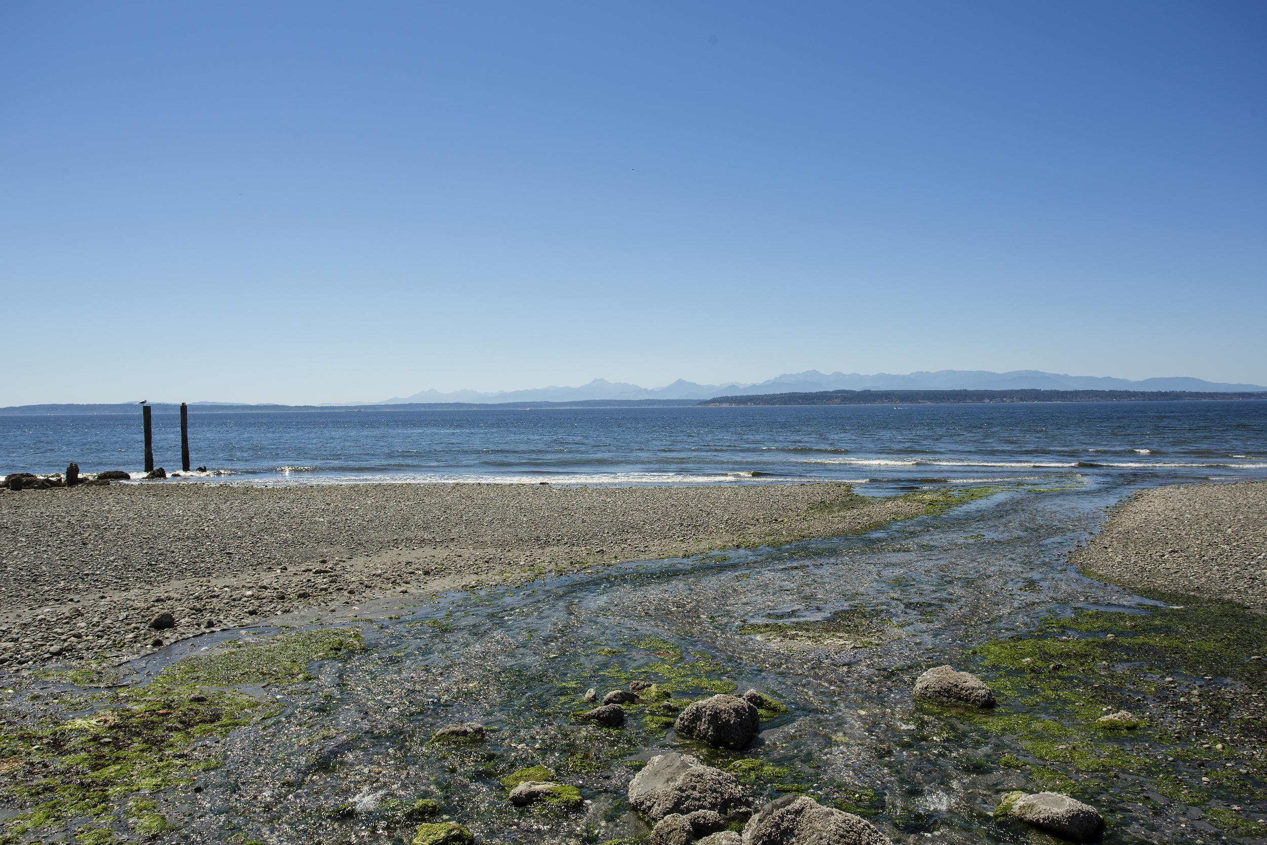 beach-1-Lrg.jpg