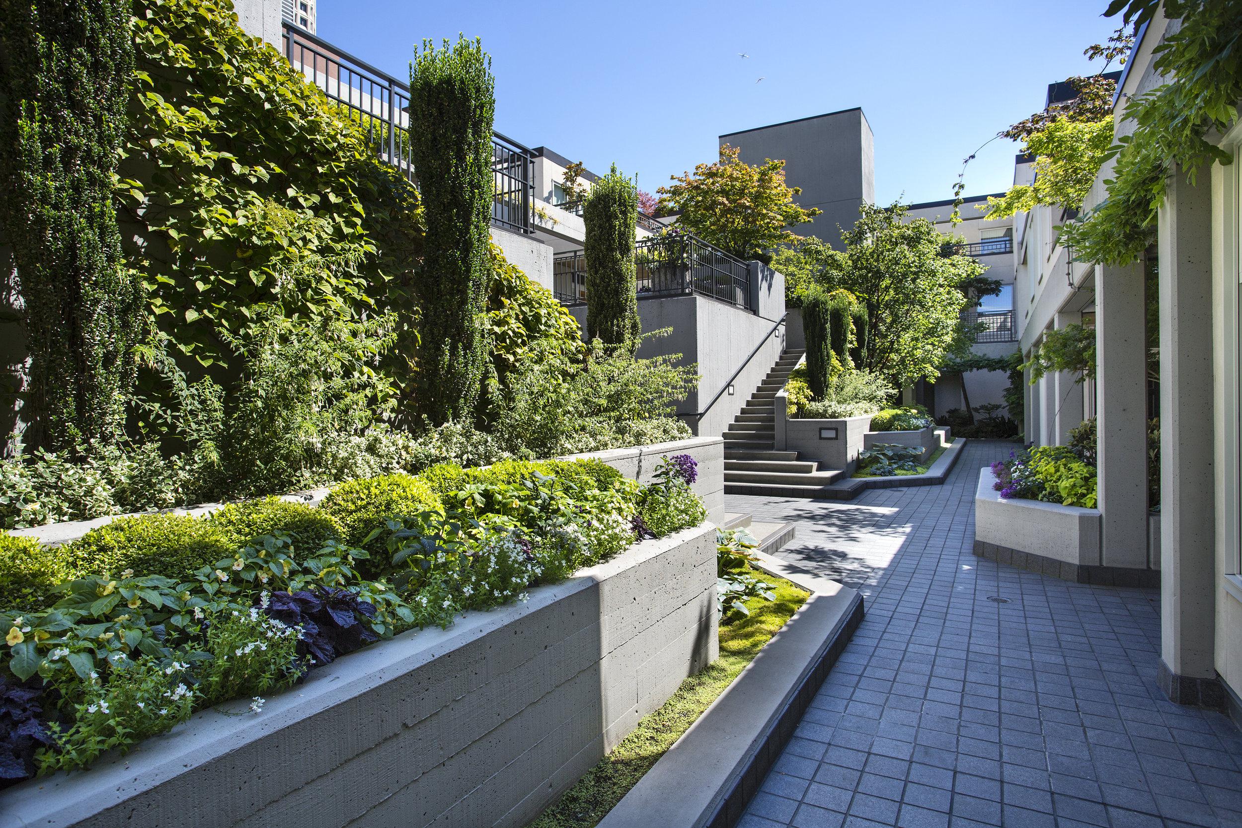 Garden-1-lrg.jpg