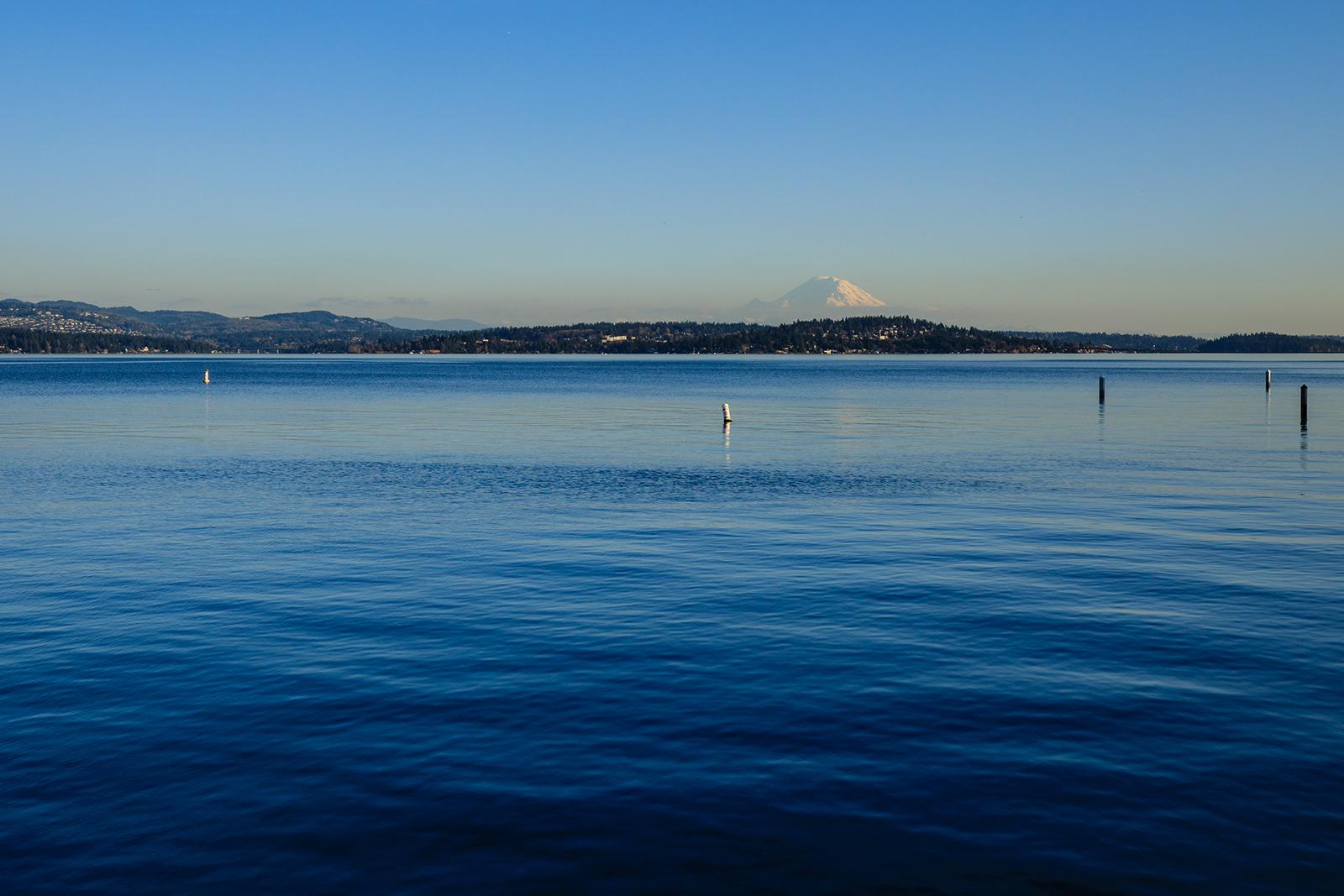 View-from Dock-Med.jpg