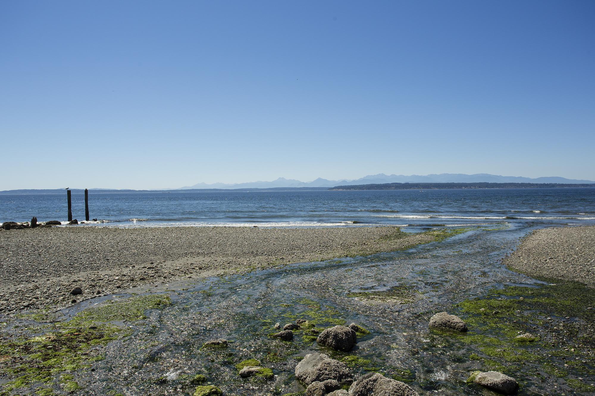 beach-1-2000.jpg