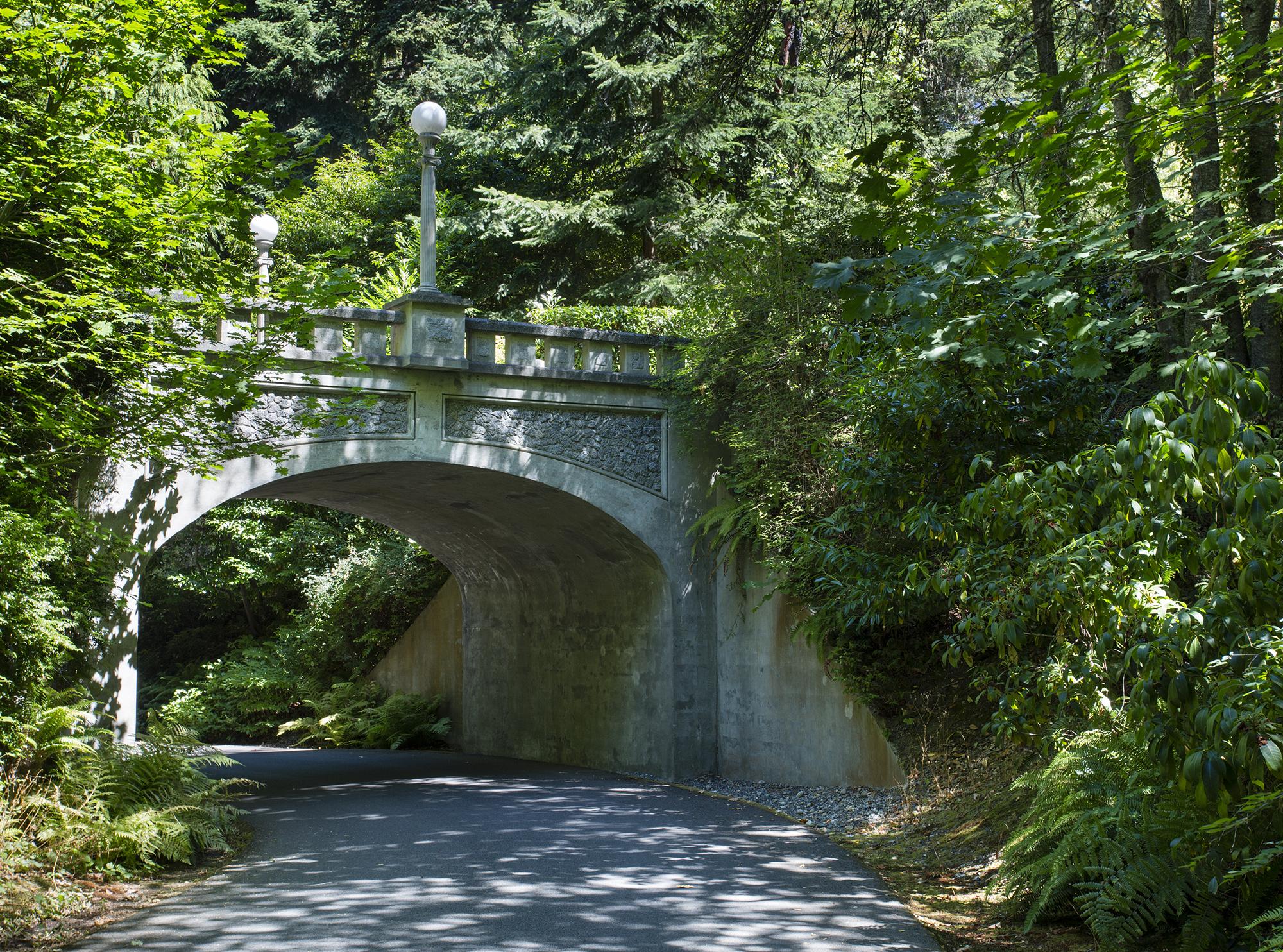 bridge-1-2000.jpg