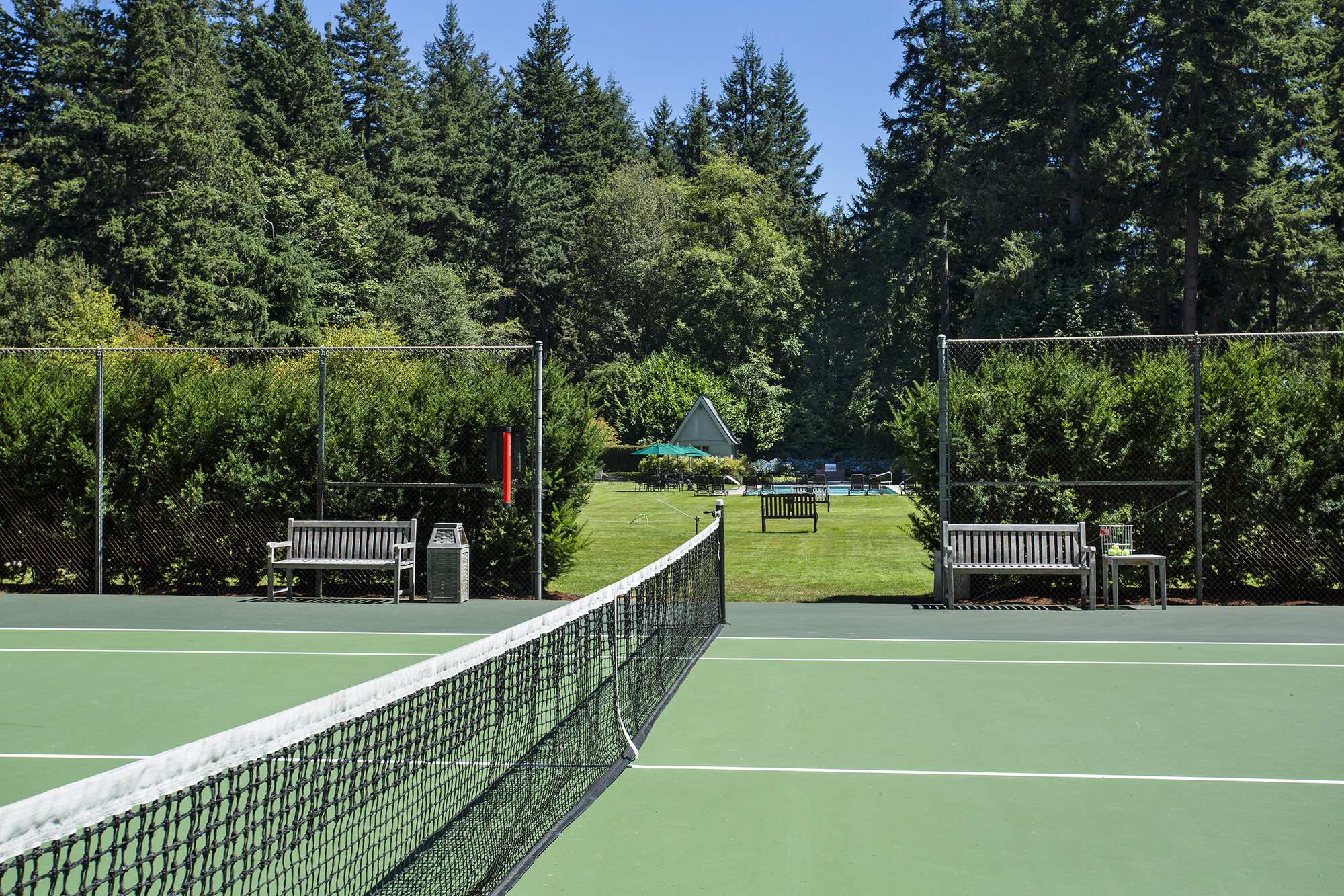 tennis-2-2000.jpg