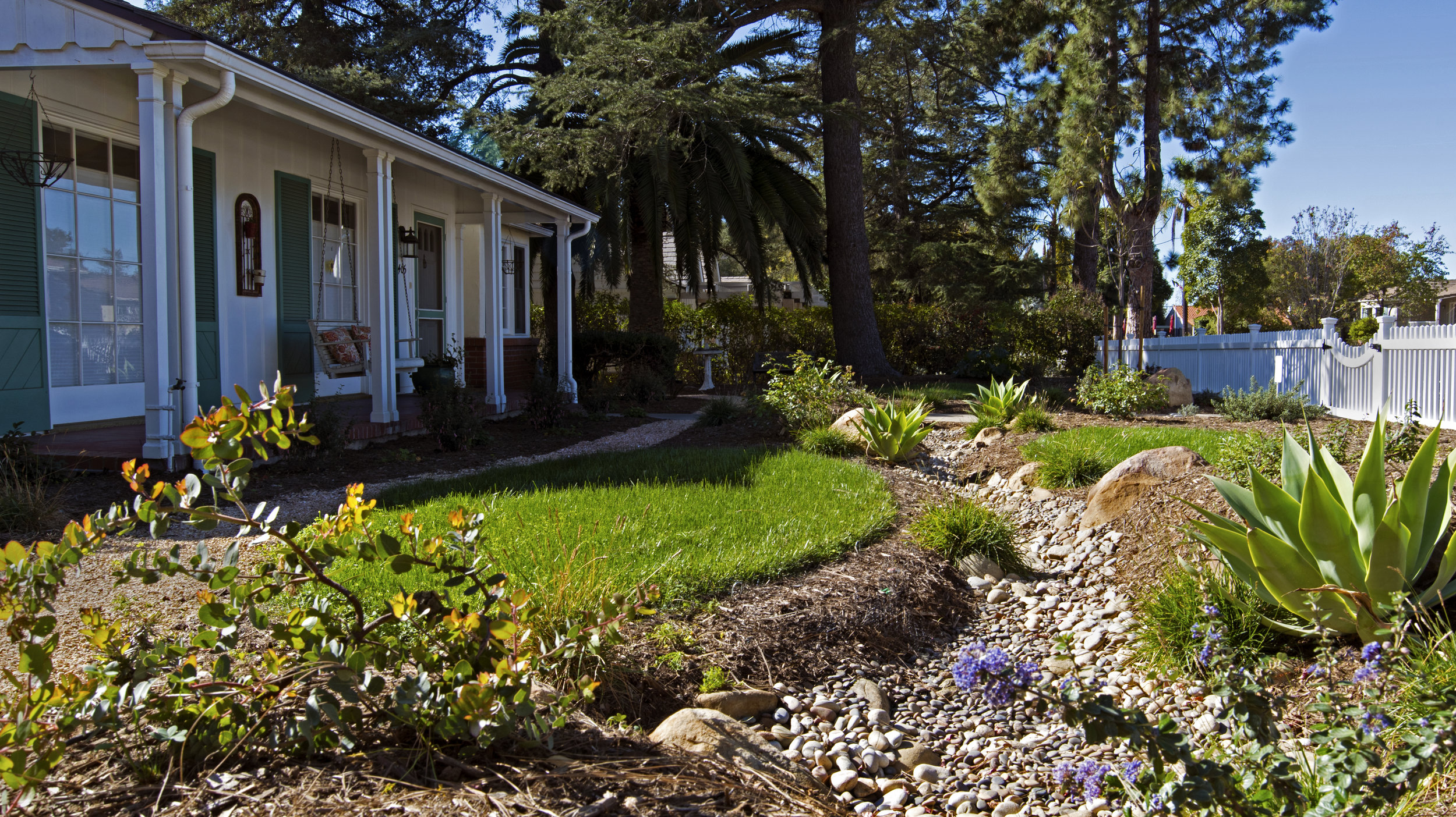 cottage landscape with lawn and succulents