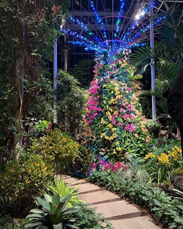 Immerse yourself in the color and atmosphere of @visit_singapore at @nybg's Orchid Evenings this Friday and Saturday. A Singapore Sling is optional but encouraged as you explore Supertrees in the Conservatory after dark. Details and tickets via link in bio.