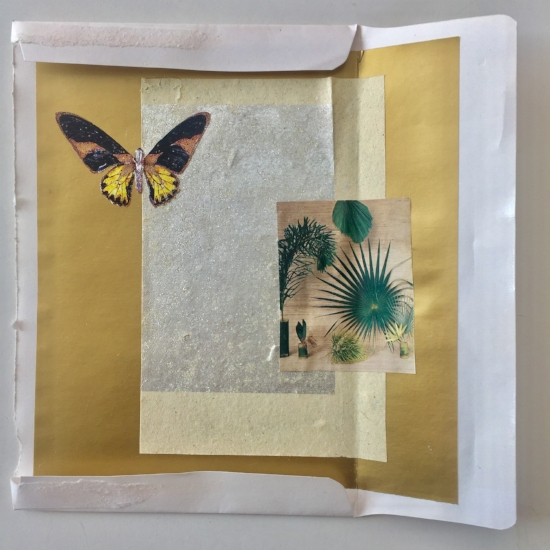 """Butterfly and Palmleaf. Sherri Silverman. Collage. 2012. 7.25"""" x 7""""."""