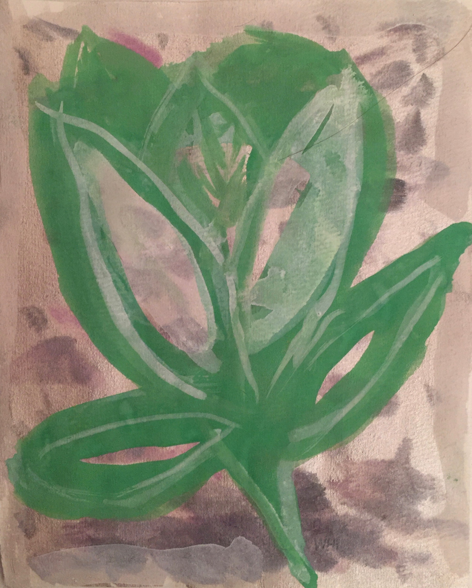 Botanica 2
