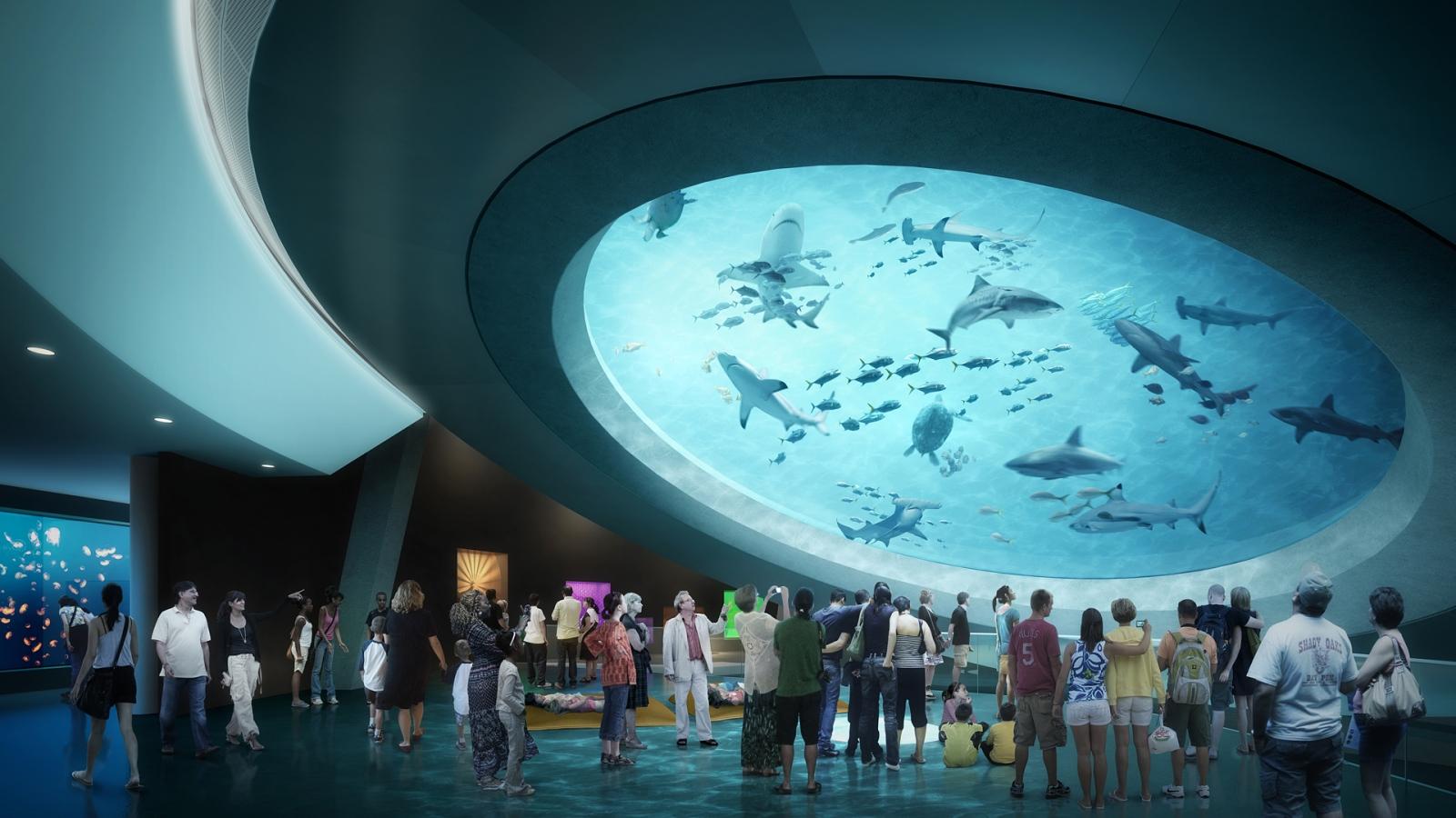 Living Core Aquarium Mezzanine at Patricia and Phillip Frost Museum of Science.jpg