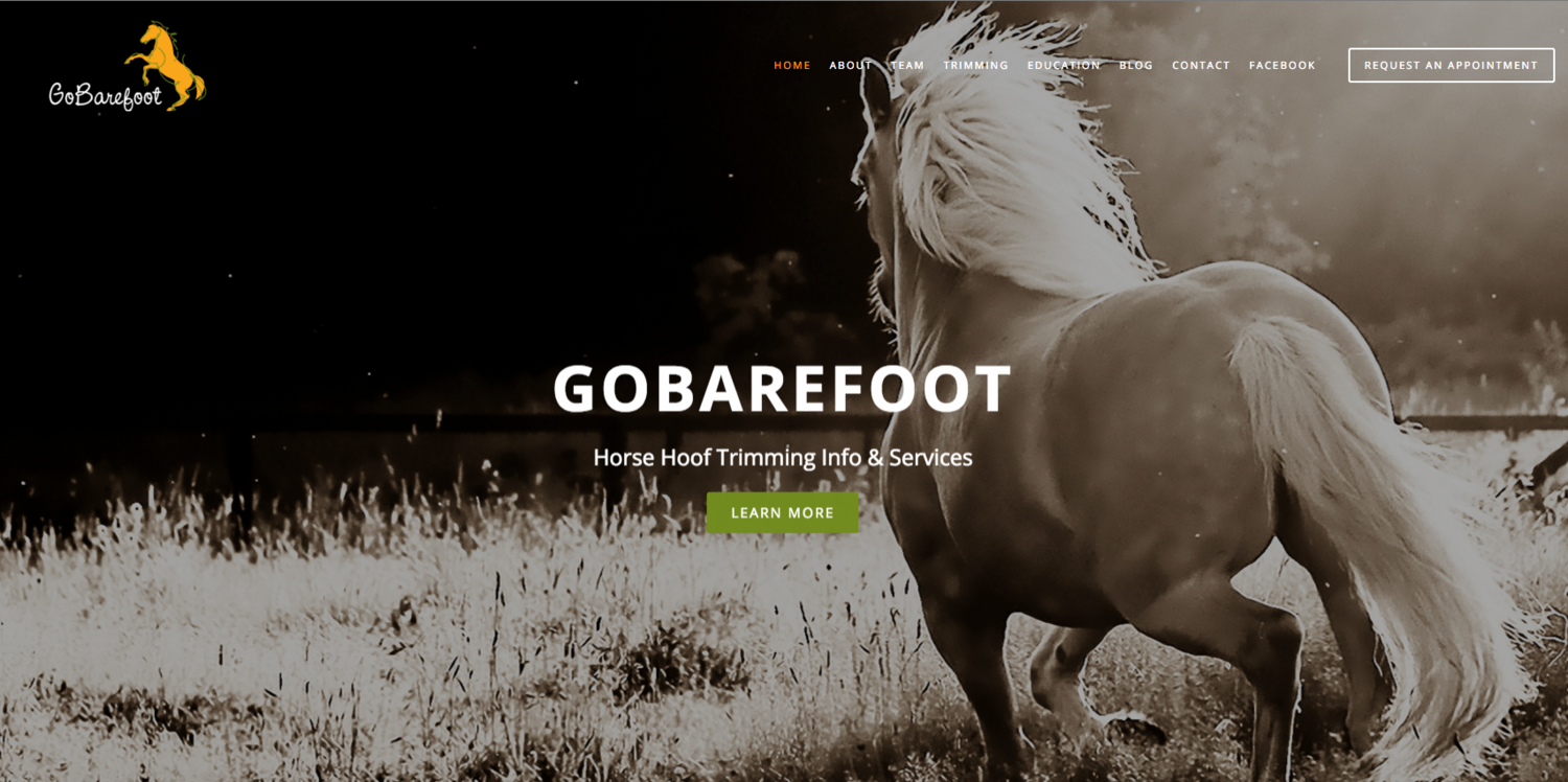 Gobarefoot website by Social Star
