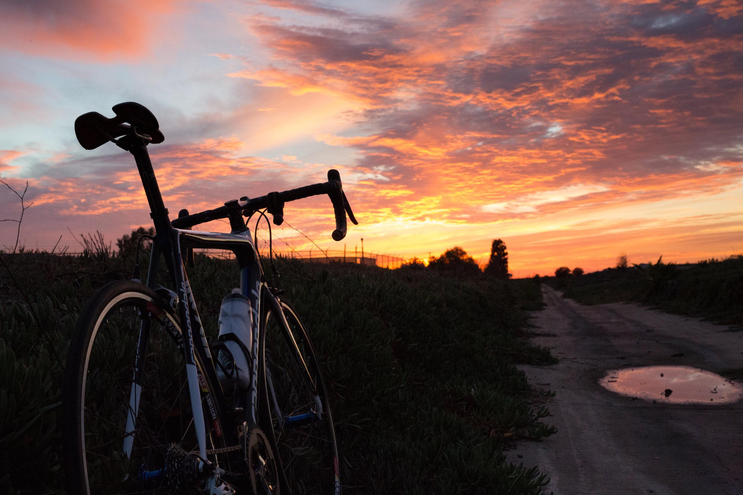 bike (1 of 1).jpg