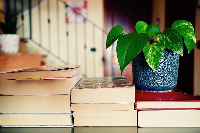 books-2826380_640.jpg