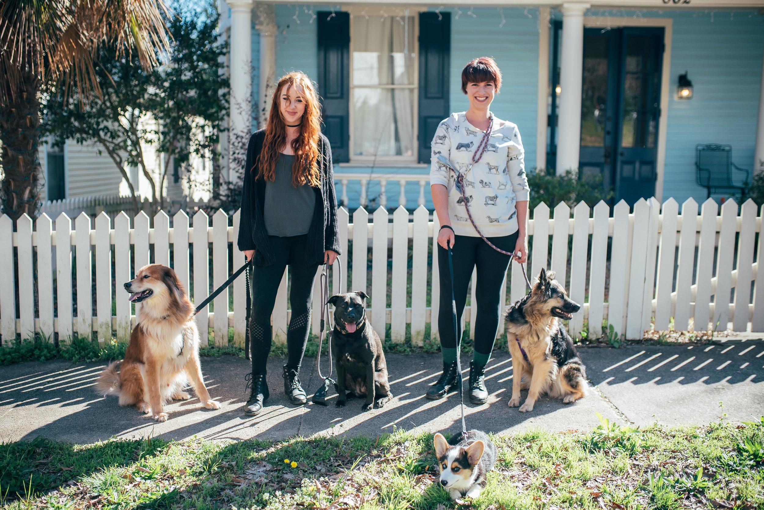 raleigh creative community - raleigh creatives - dogwalking