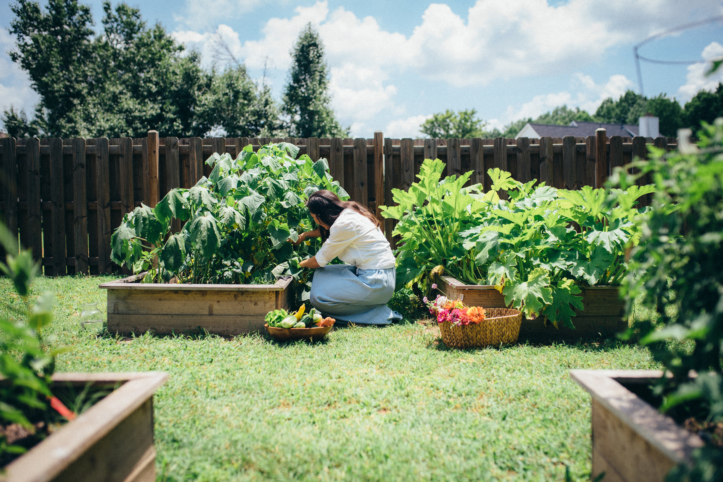 easy to grow vegetables - gardening tips - raleigh lifestyle blog