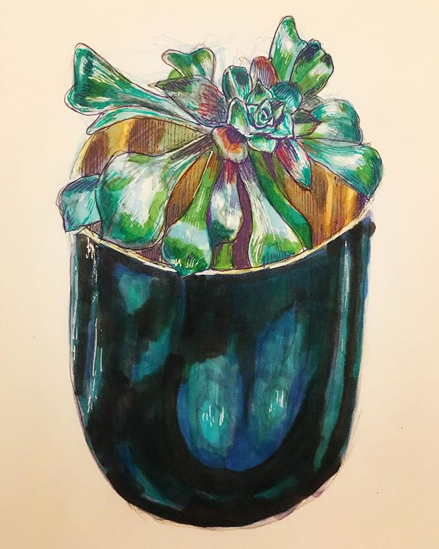 """Plant"" 🌱 markers and pens #art #instaart #markers #drawing #stilllife #artist #instaartist #sketchbook"