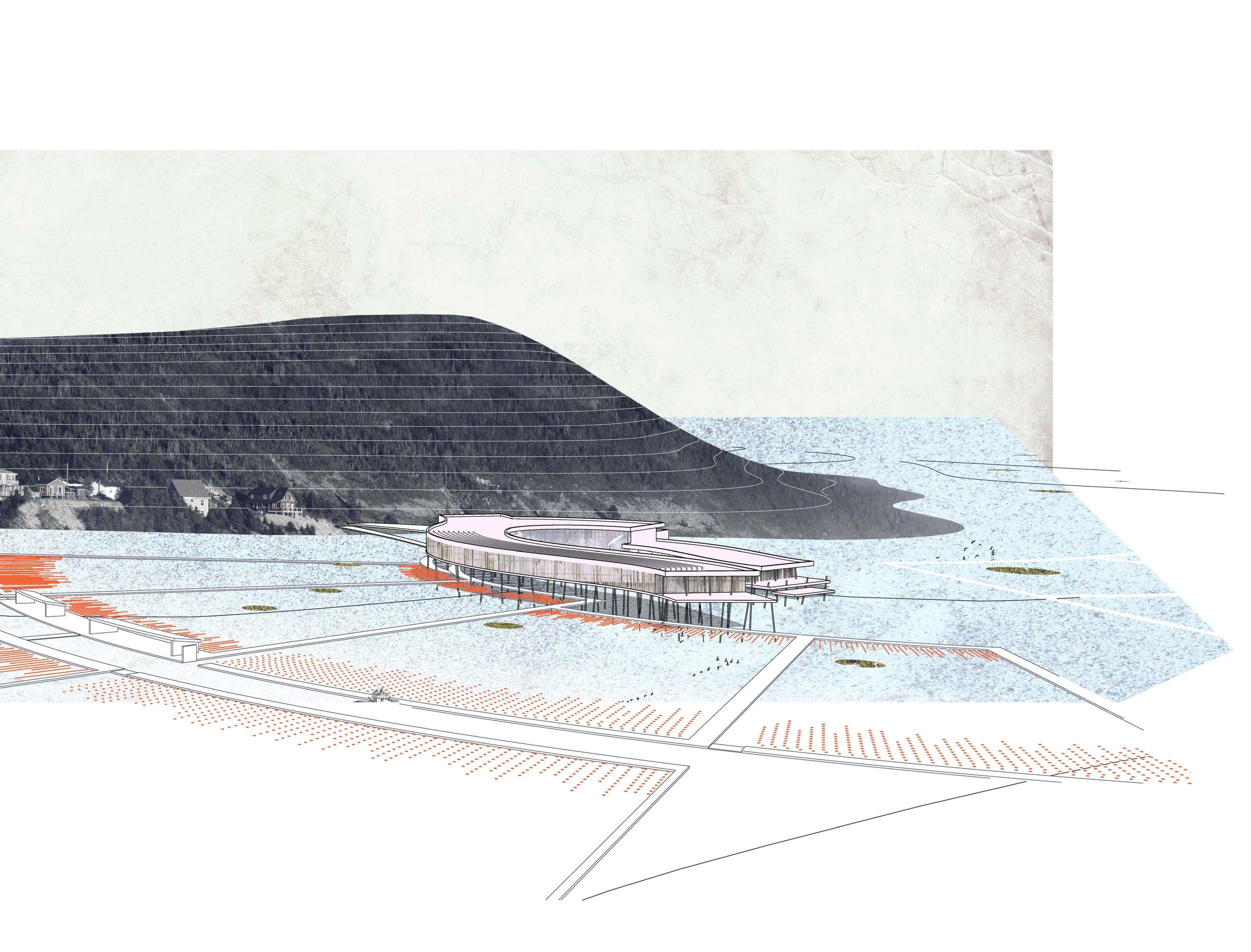 Aerial Render lines 1.jpg