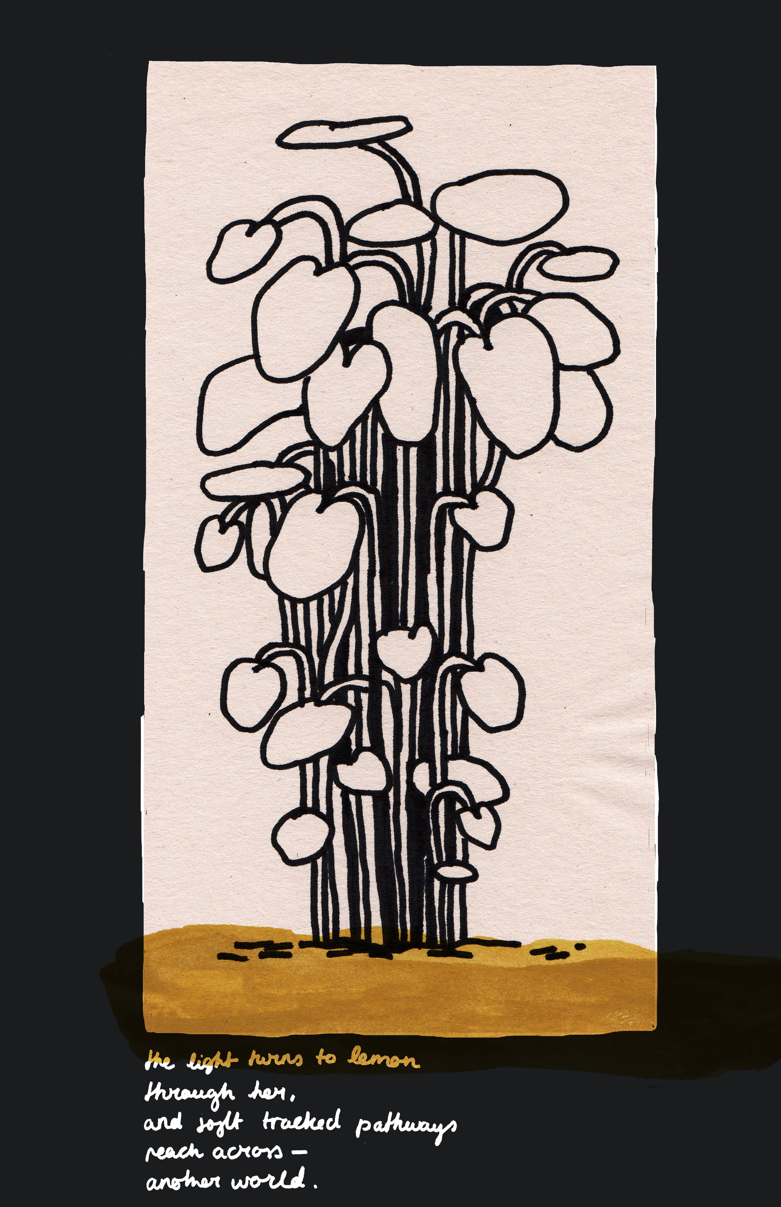 Plant poem 03.jpg